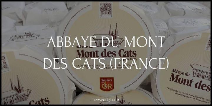 Abbaye du Mont des Cats - Cheese Origin