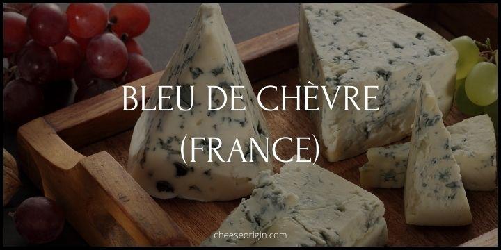 Bleu de Chèvre (FRANCE) - Cheese Origin